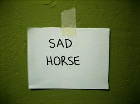 sadhorse.jpg