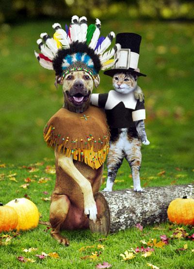 thanksgivingzz.jpg