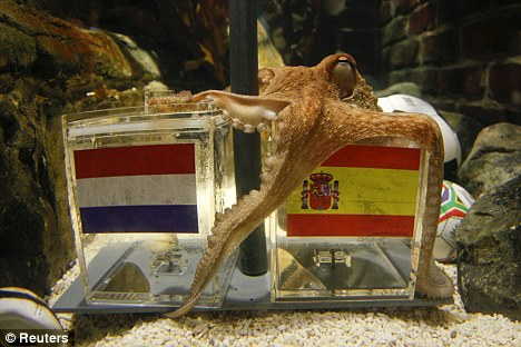 Paul The Psychic Octopus: I have spoken.