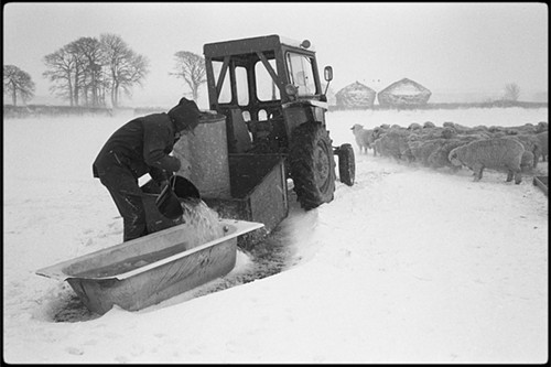 According to Google Image Search, winter is a tough time for farmers.